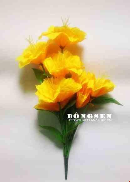 Cho thue Cành hoa múa