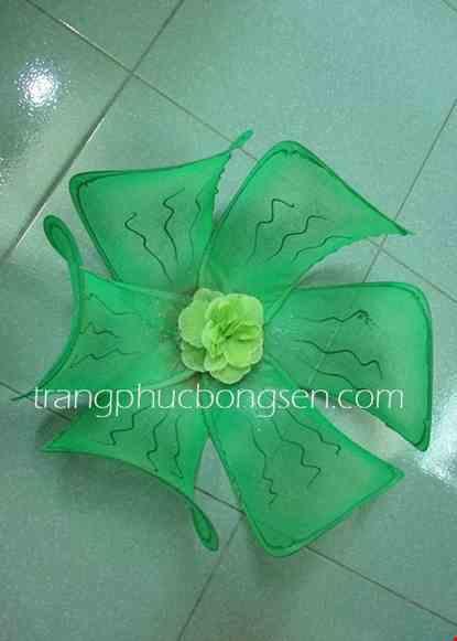 Cho thue Hoa múa cỡ lớn màu xanh lá