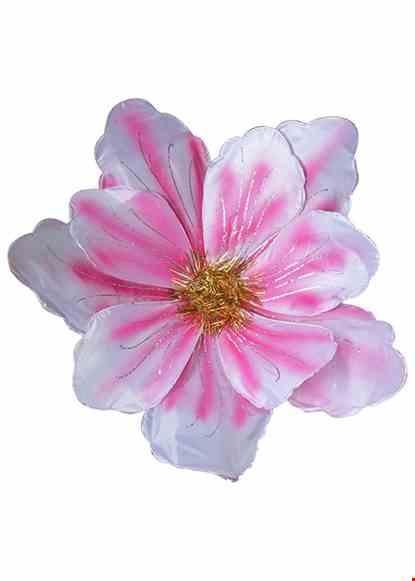 Cho thue Hoa múa cỡ lớn màu trắng - hồng