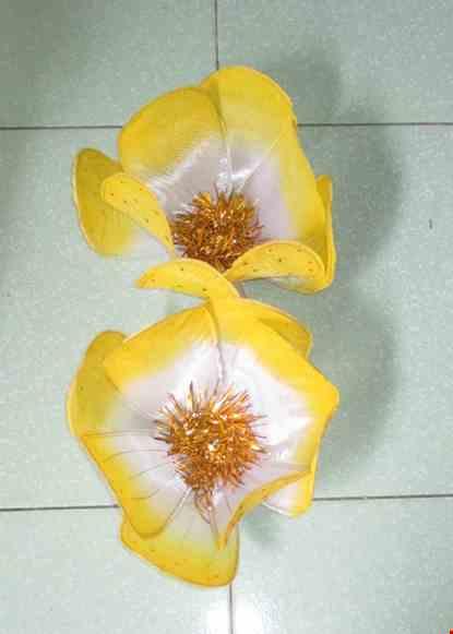 Cho thue Hoa mai cỡ nhỏ