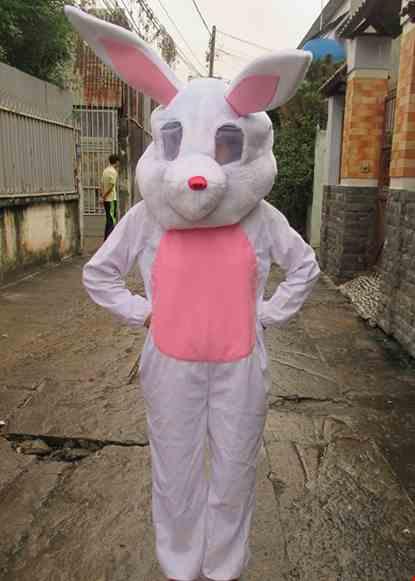 Cho thue Mascot thỏ ngọc