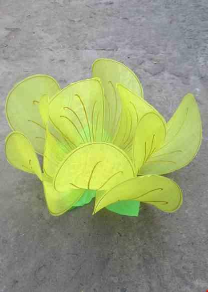 Cho thue Hoa mai cỡ lớn màu vàng