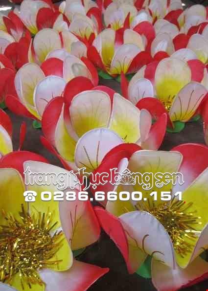 Dao cu hoa mai