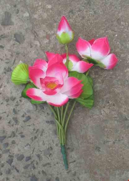 Canh hoa sen