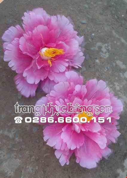 Cho thue Hoa múa hồng trắng nhiều tầng cỡ nhỏ