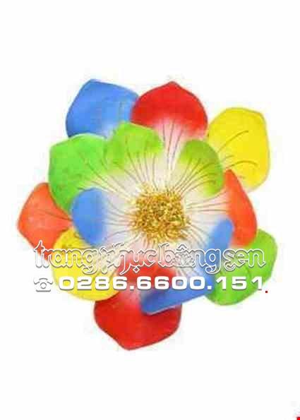 Cho thue Hoa múa ngũ sắc 3 lớp
